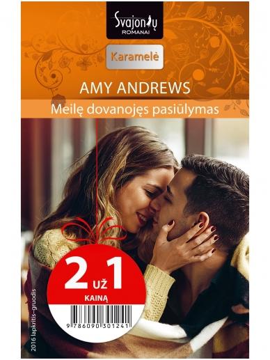 Amy Andrews. Meilę dovanojęs pasiūlymas (2016 lapkritis–gruodis)